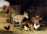 Donkey, Hens and Chickens in a Barn